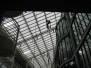 Industrieklettern - Glas- und Tragwerksreinigung